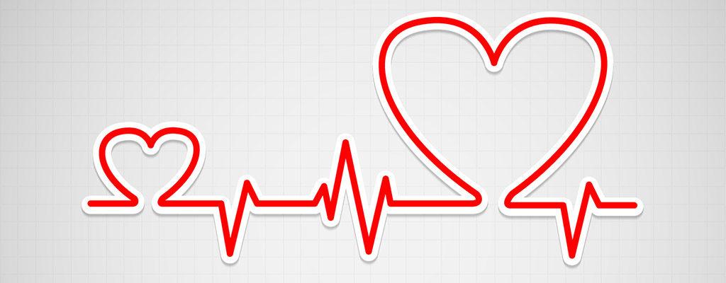 L'Infuso di Foglie di Olivo contribuisce a migliorare l'attività cardiocircolatoria
